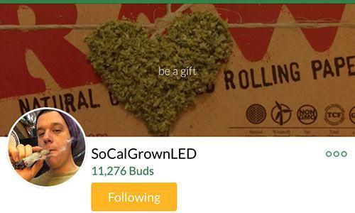 SoCalGrownLED-MassRoots-account