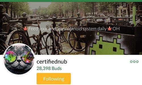 certifiednub-Mass-Roots-Account