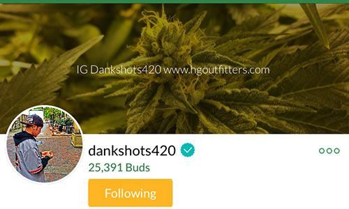 dankshots420-Mass-Roots-Account