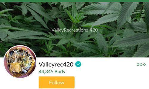 valleyrec420-Mass-Roots-Account