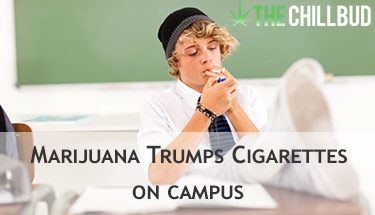 Study-Says-More-Marijuana-Smokers-than-Cigarette-Smokers-on-Campus-sm