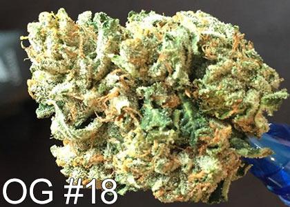 OG-#18-marijuana-strain