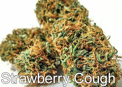 Strawberry-Cough