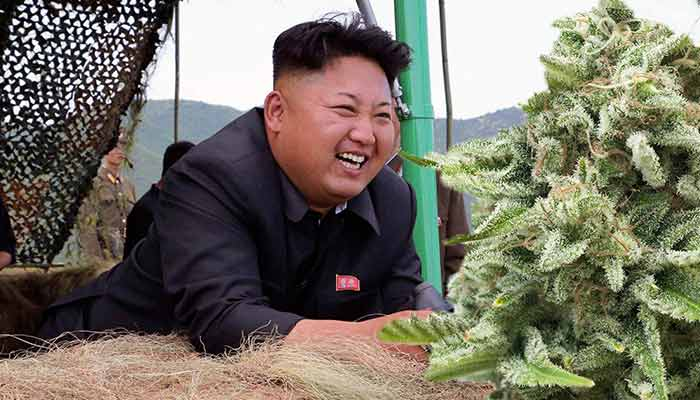 North-Korea-Best-Korea-for-Pot-Smokers