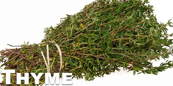 Thyme-leaves
