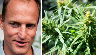 Woody-Harrelson-to-Open-Hawaiian-Marijuana-Dispensary-sm