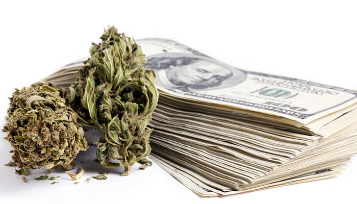 Most-Expensive-Marijuana-Strains