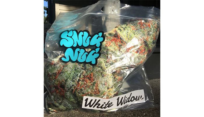 Snug-Nug-cannabis-pillow