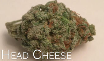 Head-Cheese-marijuana