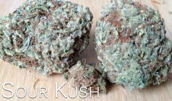 Sour-Kush-Cannabis