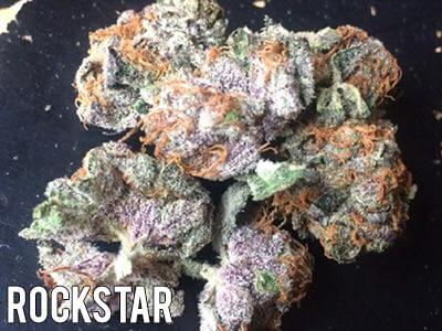 Rockstar-strain