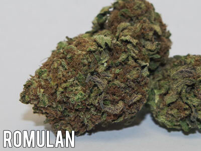 Romulan-weed