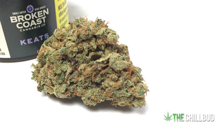 Broken-Coast-Keats-Cannabis-Strain-Review