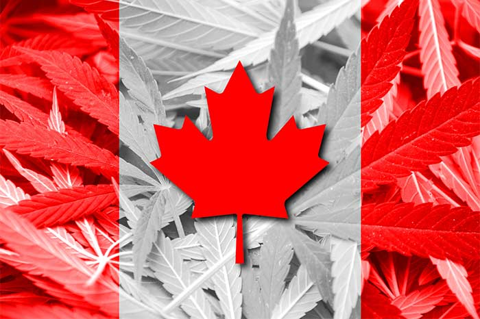 Canadian-Supreme-Court-Rules-All-Forms-of-Medical-Marijuana-Legal