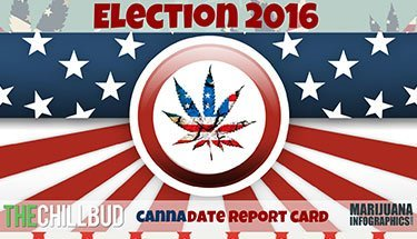 2016-Presidential-Candidates-Stance-on-Legalizing-Marijuana---Infographic