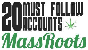 20-must-follow-accounts-on-massroots