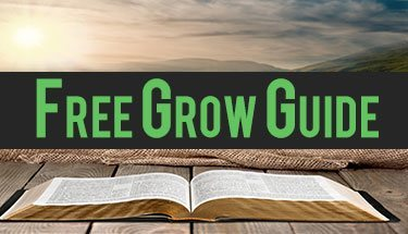Free-marijuana-grow-guide-bible
