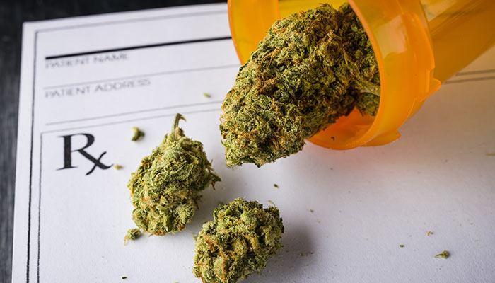 Marijuana-vs-Tylenol-for-Pain-Relief-main