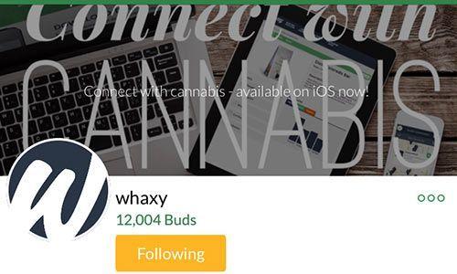 whaxy-MassRoots-account