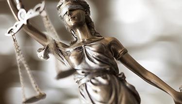 Canadian-Judge-Fines-Man-$1.30-for-30-Marijuana-Plants-sm