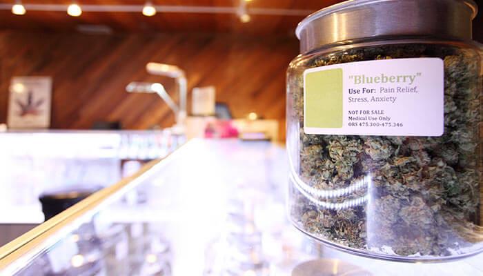 Canada's-Transition-From-Medical-Marijuana-to-Recreational-Cannabis