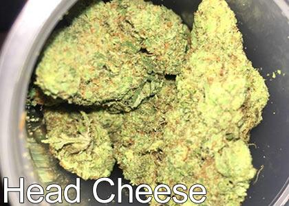 Head-Cheese