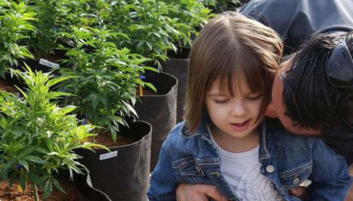 Charlotte-Figi---Cannabis-treating-epilepsy-study