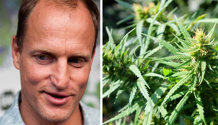 Woody-Harrelson-to-Open-Hawaiian-Marijuana-Dispensary