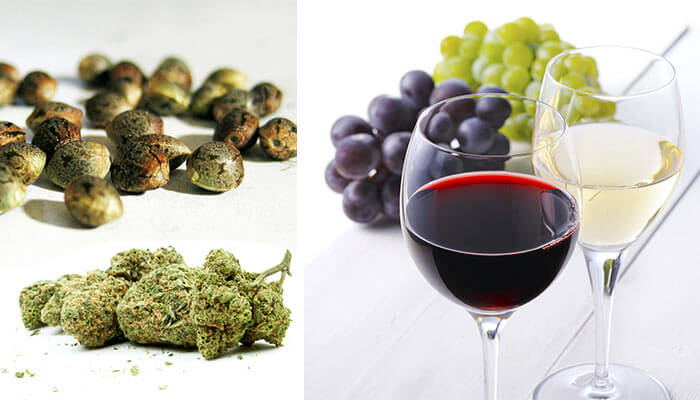 Comparing-cannabis-to-wine-varieties