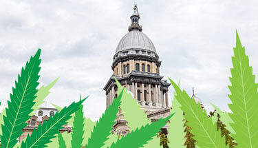 Medical-Cannabis-Bill-Revisited-in-Illinois-State-Senate-sm