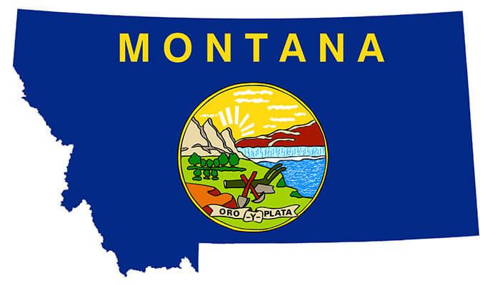 Montana-Cannabis-Landscape-Scrambled-Following-Court-Ruling