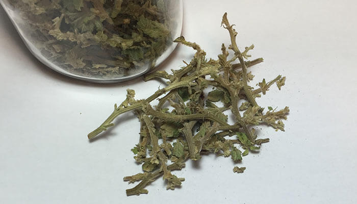 How-To-Use-Weed-Stems-and-Why-Smoking-Stems-Is-A-Bad-Idea