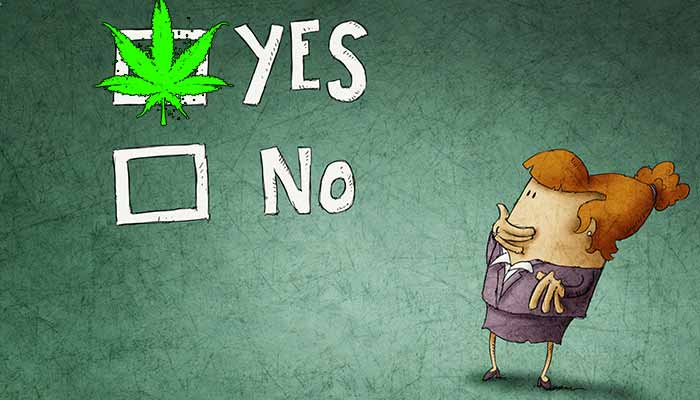 poll-majority-of-maine-voters-favor-recreational-cannabis-legalization