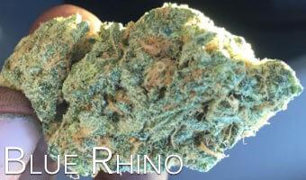 Blue-Rhino-strain-for-anxiety