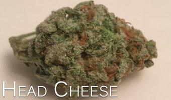 Head-Cheese-marijuana