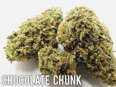 Chocolate-Chunk-marijuana-strain-indica