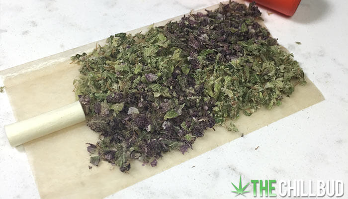 Turning-Green-Weed-Purple