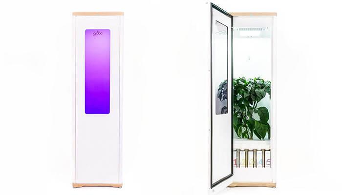 Grobo-automated-grow-box-for-cannabis